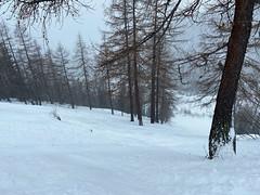 Foto 27.02.20, 11 37 33_aj