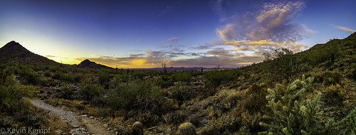 arizona clouds hiking scottsdale sunrise cactus saguaro sky cholla landscape desert mountains mcdowellsonoranpreserve