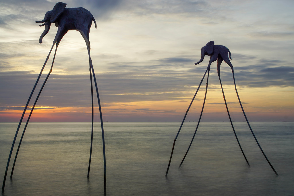 Long Exposure Photo of Elephants standing in the Water at Sunset Sanato Beach Club in Phu Quoc, Vietnam