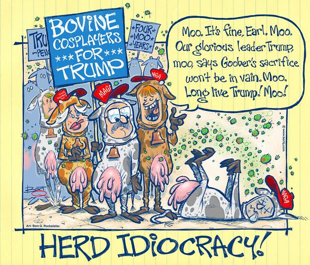 Herd Idiocracy (Oct.19, 2020)