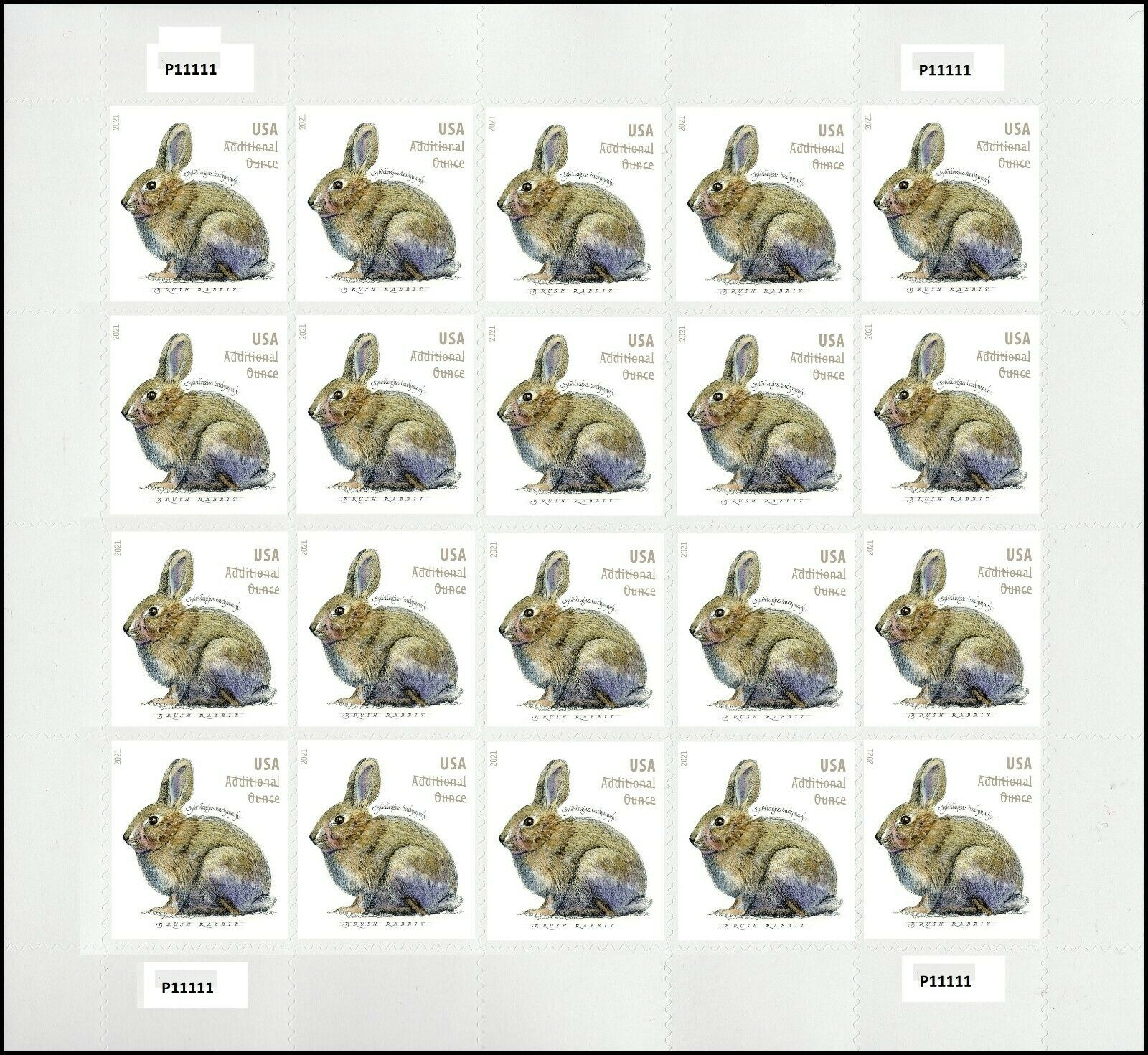 United States: Brush Rabbit, 24 January 2021 (pane of 20)