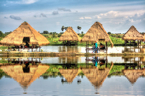 """Tonle Sap"" Lake K - Khmer Lotus Farm 02 