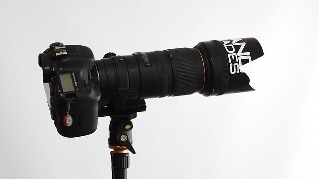 Canon EOS 7D Mark II + SIGMA 70-200mm f2.8 APO EX DG HSM + SIGMA APO Teleconverter 1.4x EX DG.