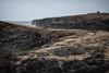 Orkney rock
