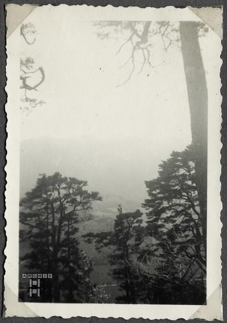 ArchivTappen2AAl2c280 Ausflug, Landschaftsfoto, Österreich, 1930-1941