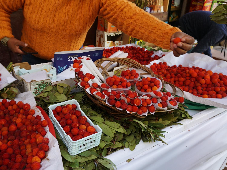 Fes Medina fruits