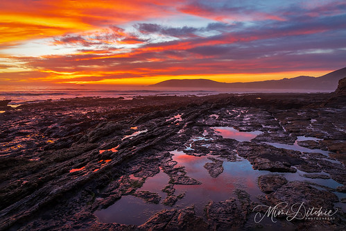 shellbeach clouds seascape sunset happynewyear newyearsday2021 2021 newyearsday rocks rockyshore cloudscape california getty gettyimages mimiditchie mimiditchiephotography