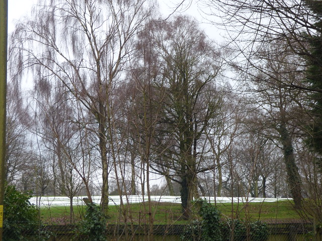 Snow on the green at Moseley Golf Club