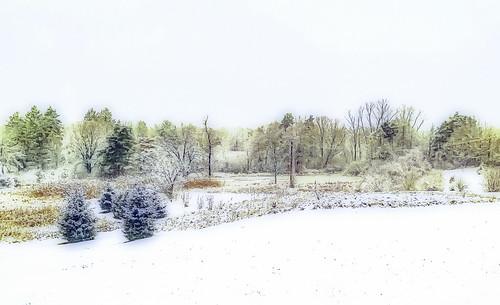 winter michigan landscape january lakeorion unitedstates