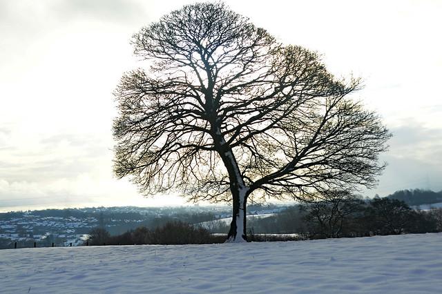 Newchapel, N. Staffordshire