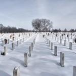 Winter Blankets the Fallen