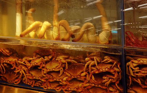Live geoducks and Dungeness crabs at the T and T supermarket in Vancouver