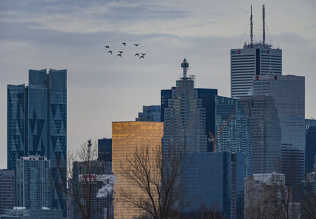 Toronto's Financial District