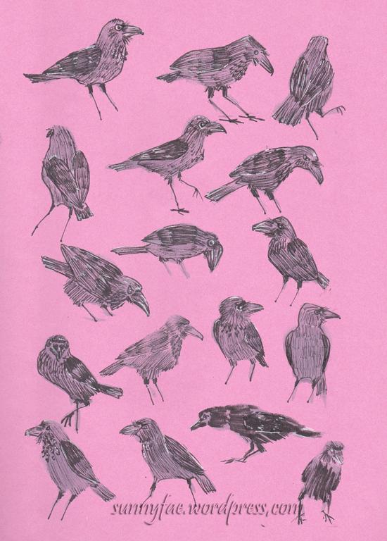 crow thumbnail drawings