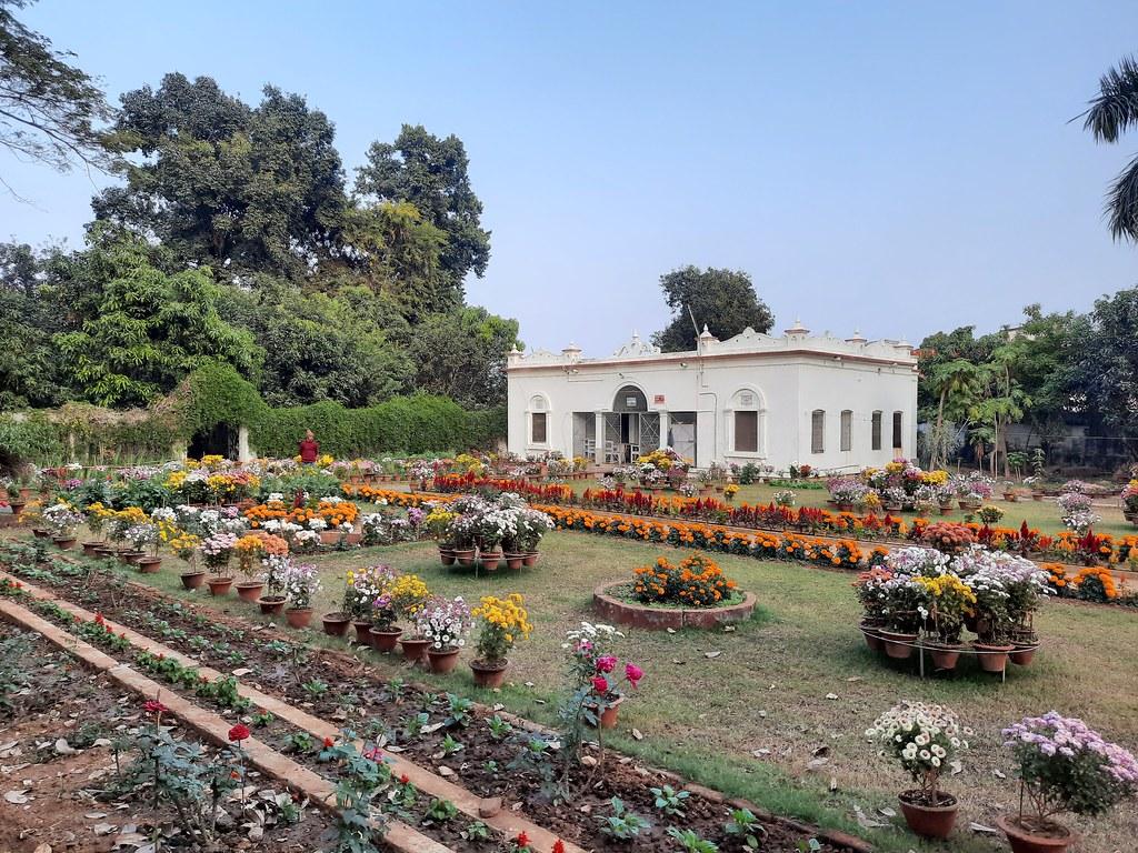 Vidyapith Flowers (27)
