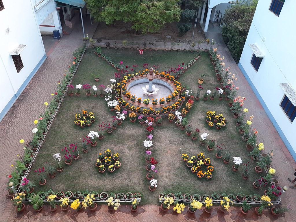Vidyapith Flowers (54)