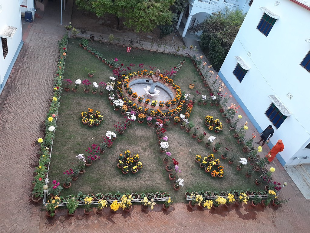 Vidyapith Flowers (55)