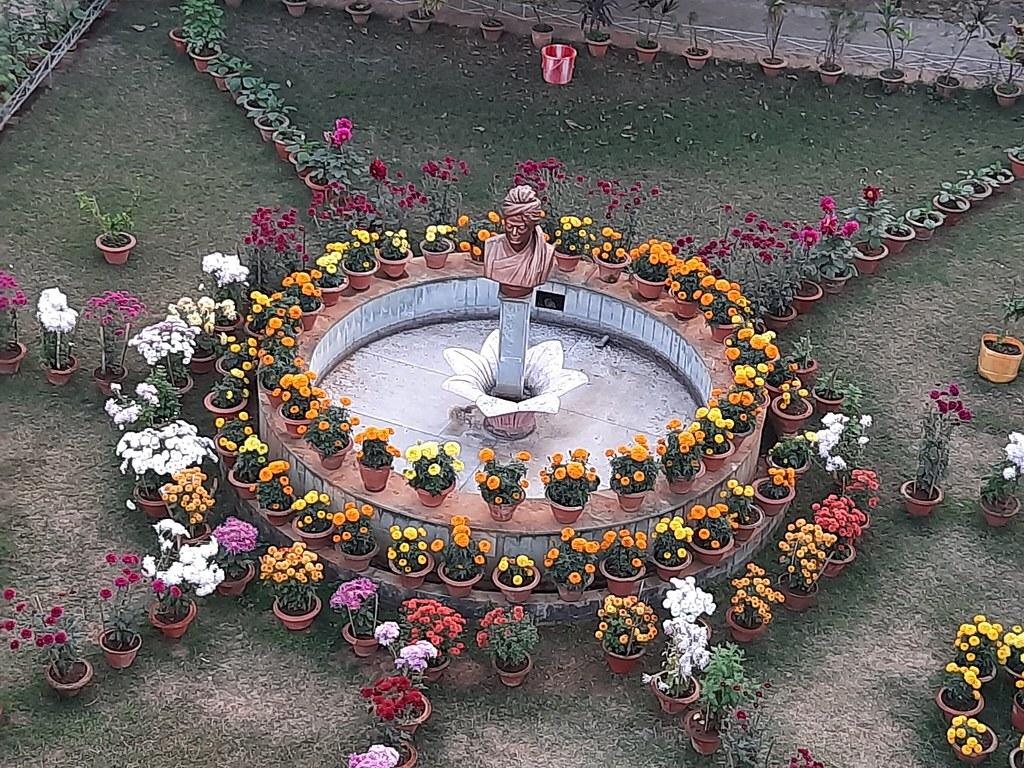 Vidyapith Flowers (57)