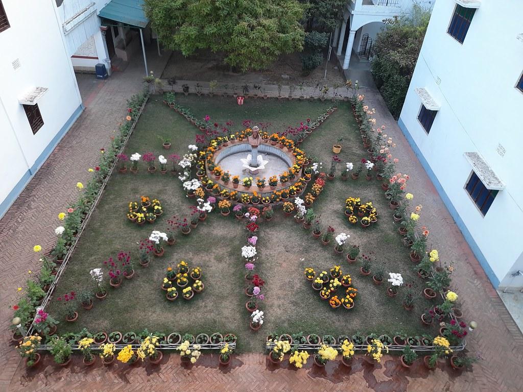Vidyapith Flowers (52)