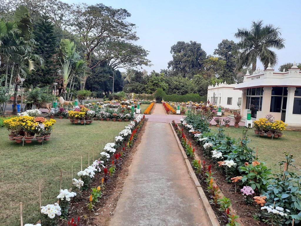 Vidyapith Flowers (32)