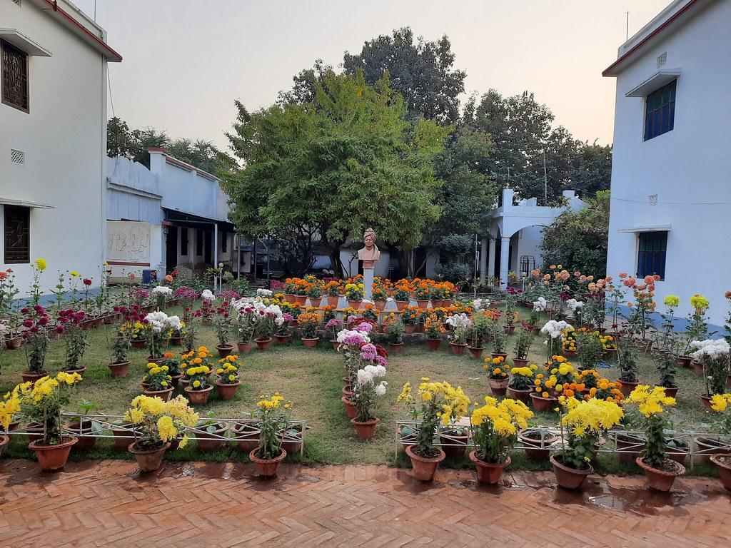 Vidyapith Flowers (33)