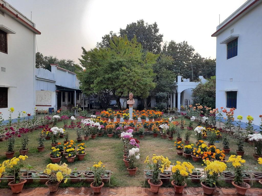 Vidyapith Flowers (34)