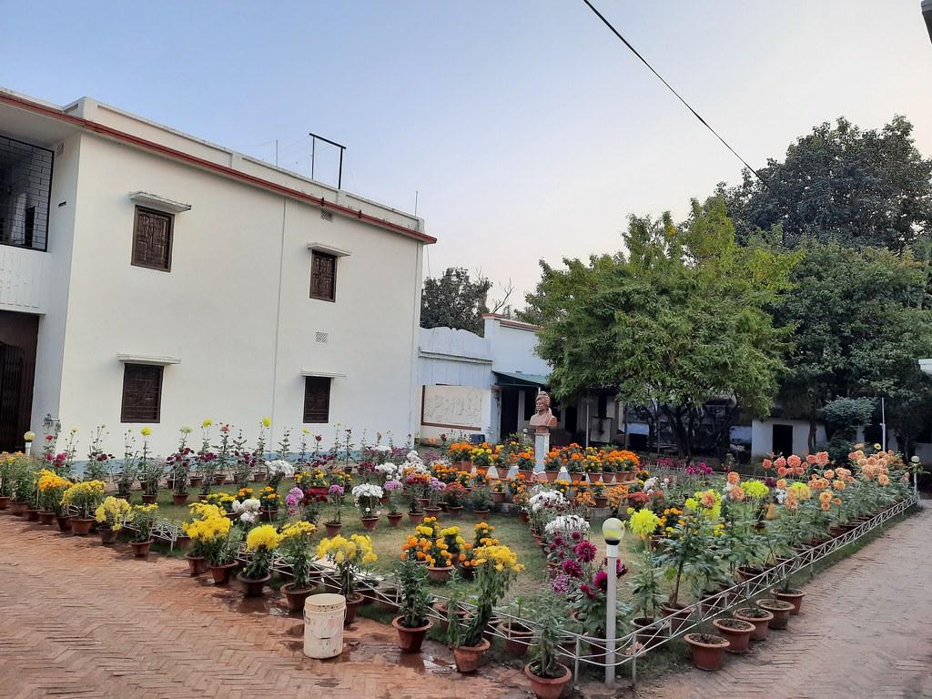 Vidyapith Flowers (35)