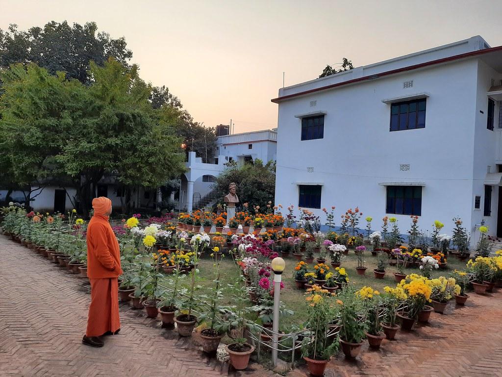 Vidyapith Flowers (38)