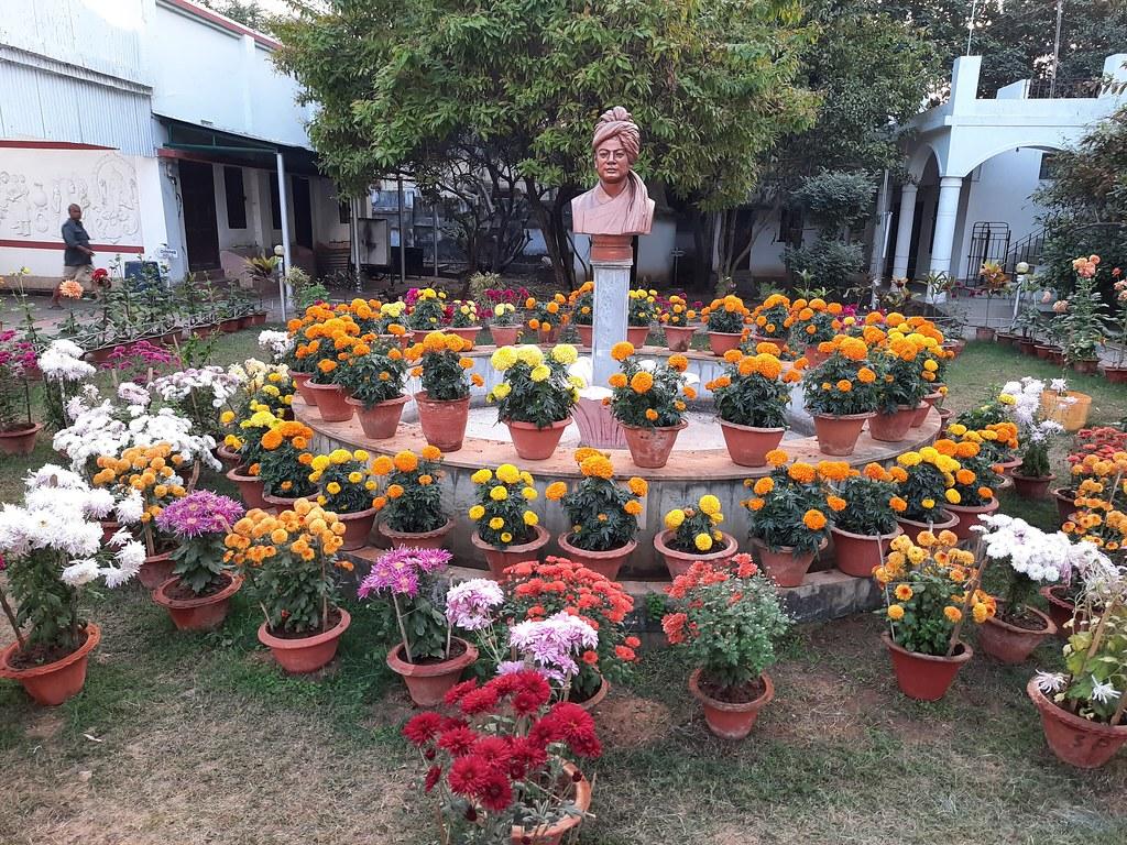 Vidyapith Flowers (47)