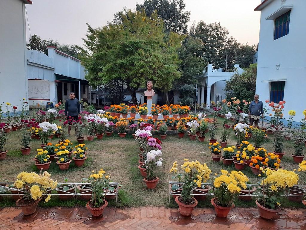 Vidyapith Flowers (60)