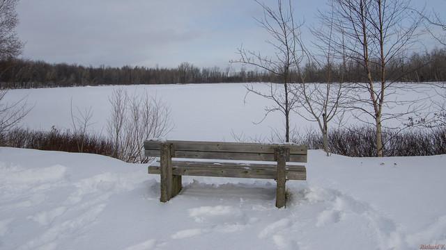 Hiver, winter, Base de Plein-Air-de-Ste-Foy, Québec, Canada - 5958