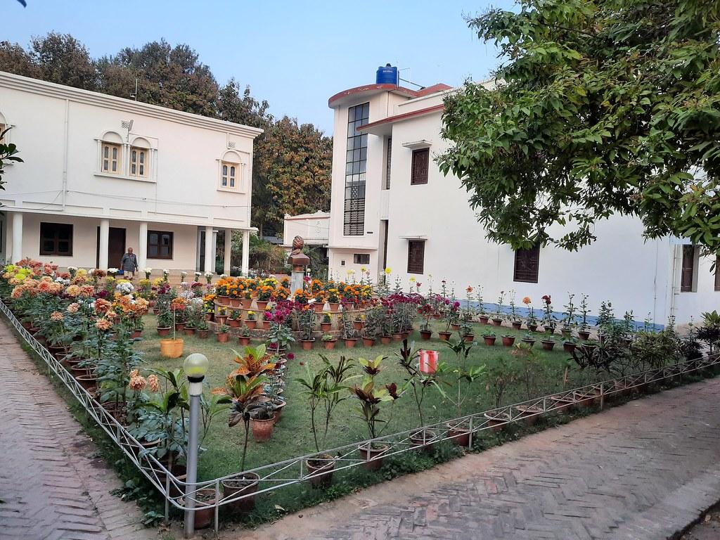 Vidyapith Flowers (36)