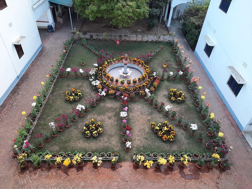 Vidyapith Flowers (53)