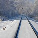 DSCN9436 hoar frost