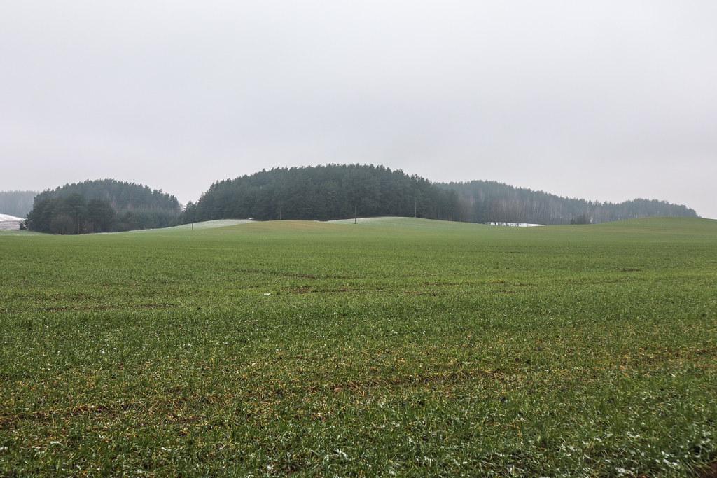 Холмы около г.п.Новоельня