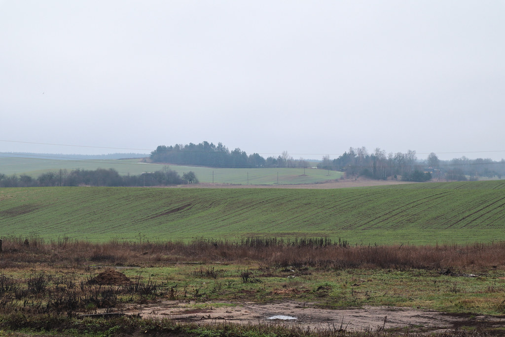 Холмы около д.Белогруда