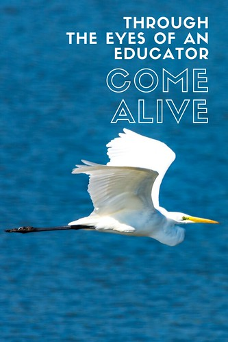 """Through the Eyes of an Educator: """"Come Alive"""""""
