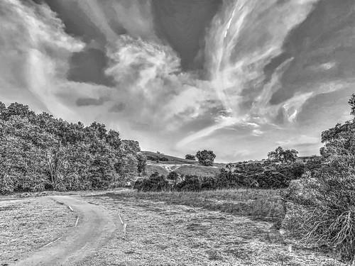 landscape arastraderopreserve paloalto california blackandwhile bw clouds wispy path