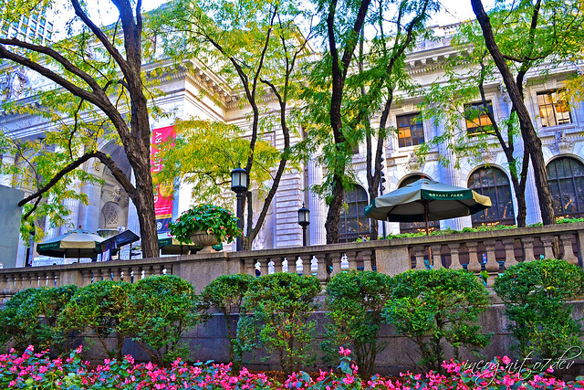 Bryant Park & NYPL New York Public Library 5th Ave View Midtown Manhattan New York City NY P00762 DSC_1599