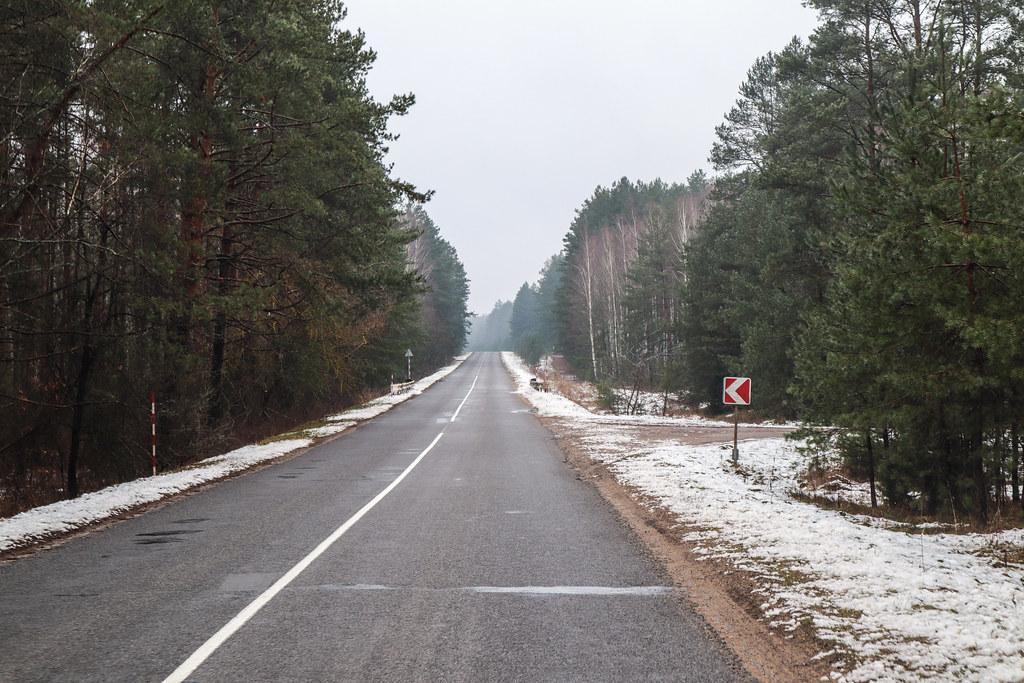 Дорога из Дворца в Новоельню