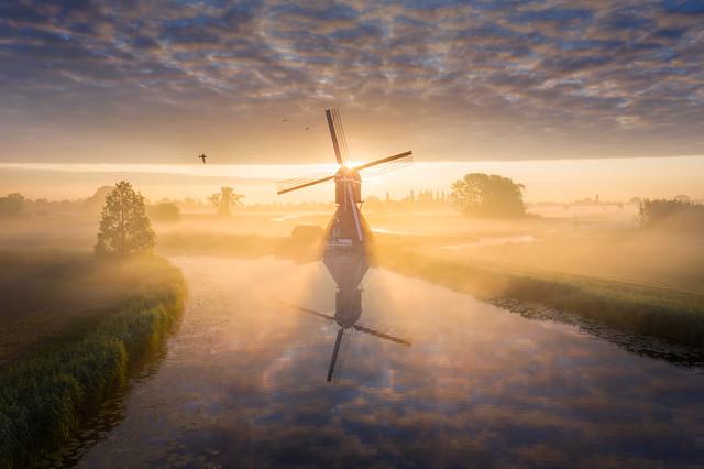 Windmill Magic