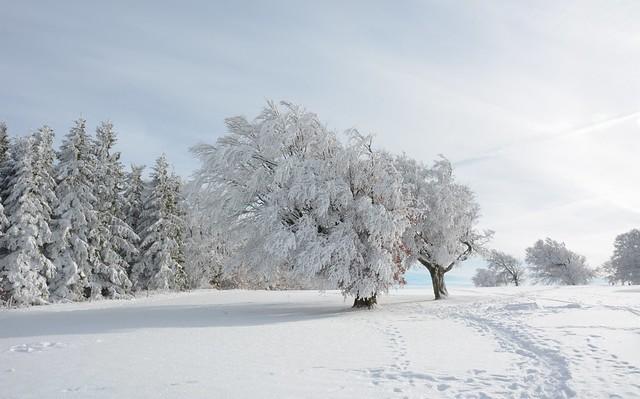 *❄*La Magie de l'hiver (2)*❄*