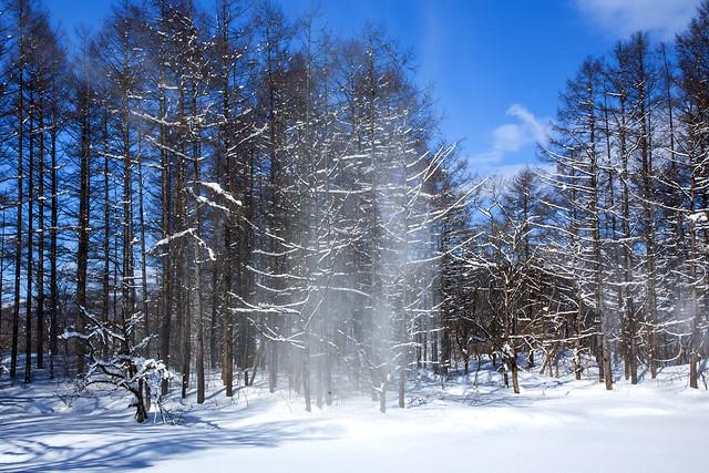 080210_Winter morning in Urabandai