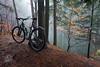 rowerem na stawy