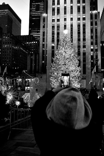 me taking a photo of my daughter taking a photo of the tree...