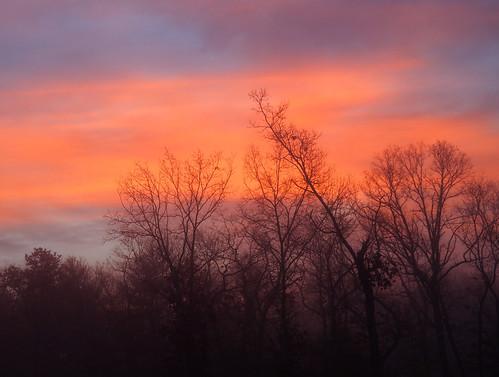 14150 coventry m43 olympus rhodeisland sunrise outdoors