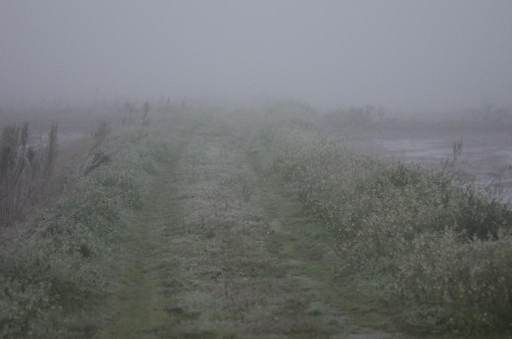 Frozen route...
