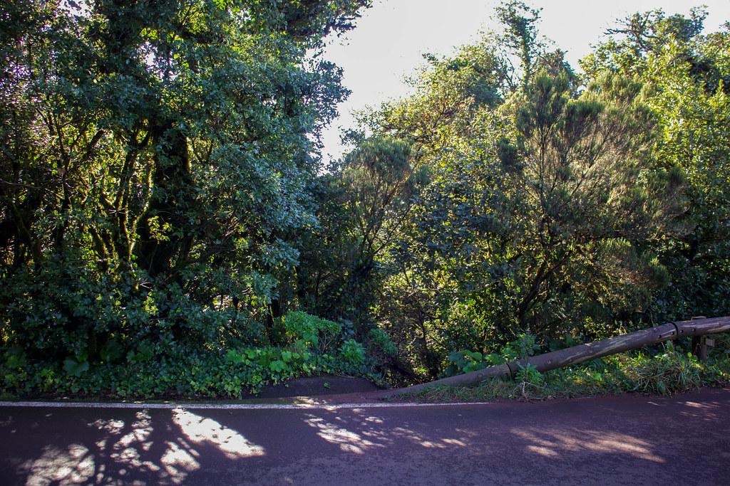 Inicio del sendero de Monte de Aguirre desde Pico del Inglés