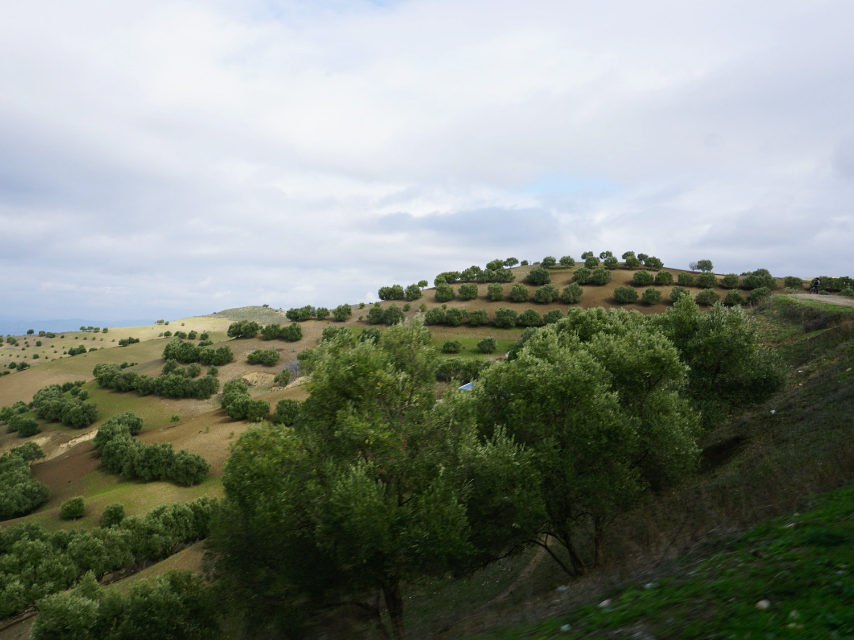 Morocco countrysides