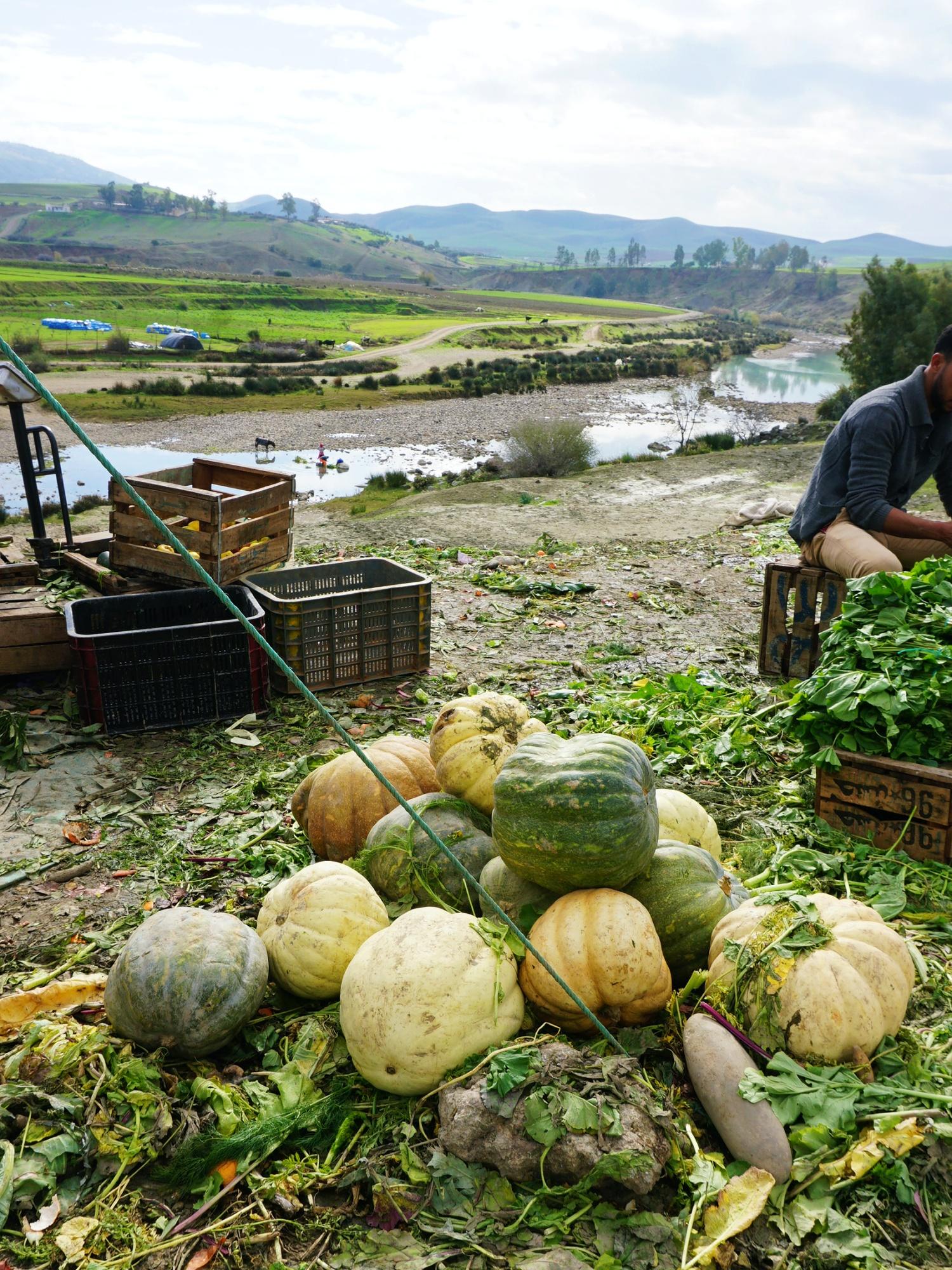 Morocco countryside market